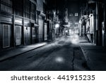 moody monochrome view of... | Shutterstock . vector #441915235