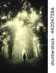 Man In Dark Green Forest