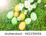 Colored Easter Eggs Hidden In...
