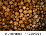 Stack Of Pine Logs In Fire Pil...