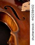 violin macro with black... | Shutterstock . vector #442258432
