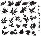 vector set of black floral