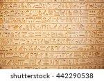 egyptian hieroglyphs on the wall   Shutterstock . vector #442290538