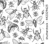 hand drawn vector pattern with... | Shutterstock .eps vector #442329625