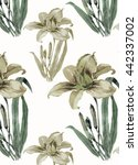 lily flowers pattern watercolor | Shutterstock . vector #442337002