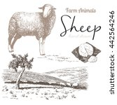 Sheep 4. Sheep Breeding. Set O...