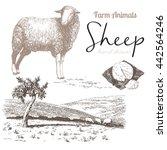 Sheep 4. Sheep Breeding. Set O...
