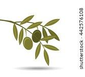 olive oil design  | Shutterstock .eps vector #442576108