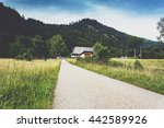 summer countryside landscape... | Shutterstock . vector #442589926
