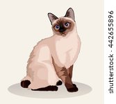 Siamese Cat. Favorite Pet Bree...