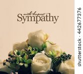 with deepest sympathy  white... | Shutterstock . vector #442677376