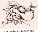 hand drawn hat  gloves  sword... | Shutterstock .eps vector #442679782