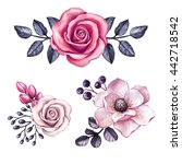 watercolor illustration  pink... | Shutterstock . vector #442718542