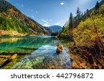 amazing view of the arrow...   Shutterstock . vector #442796872