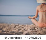 a woman in an orange bikini... | Shutterstock . vector #442902808