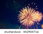 4th july fireworks. fireworks... | Shutterstock . vector #442904716