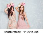 two beautiful girls stand in a... | Shutterstock . vector #443045605