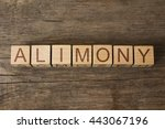 Small photo of the word of ALIMONY on wooden cubes
