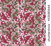 hollyhocks seamless pattern | Shutterstock . vector #443080666