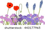 flower bed with red poppies ... | Shutterstock .eps vector #443177965