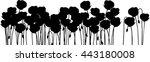 silhouette of poppies | Shutterstock .eps vector #443180008