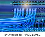 network cables connected in... | Shutterstock . vector #443216962