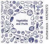 doodle frame from vegetables... | Shutterstock .eps vector #443290372