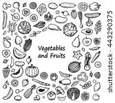 doodle frame from vegetables... | Shutterstock .eps vector #443290375