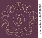 yoga sun salutation surya... | Shutterstock .eps vector #443310202