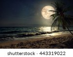 beautiful fantasy tropical... | Shutterstock . vector #443319022