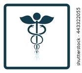 medicine sign icon. shadow... | Shutterstock .eps vector #443322055