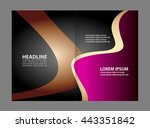 business brochure flyer... | Shutterstock .eps vector #443351842