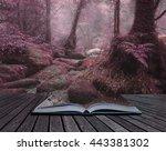 beautiful surreal alternate... | Shutterstock . vector #443381302