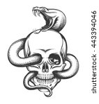human skull with crawling snake.... | Shutterstock .eps vector #443394046