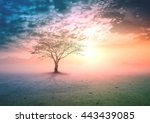 world environment day concept ... | Shutterstock . vector #443439085