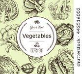 vector background sketch fresh... | Shutterstock .eps vector #443516002