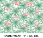 pink flamingos and palm leaves... | Shutterstock .eps vector #443533186