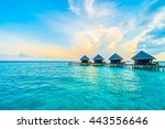 beautiful tropical maldives... | Shutterstock . vector #443556646
