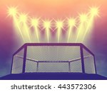 mixed martial arts cage and... | Shutterstock . vector #443572306