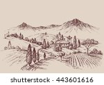 Vineyard Sketch. Wine Label...