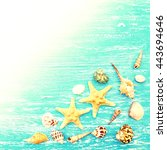 seashells and starfish on a... | Shutterstock . vector #443694646