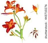 Watercolor Scientific Botanica...