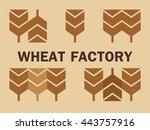 modern logo with wheat  ...   Shutterstock .eps vector #443757916