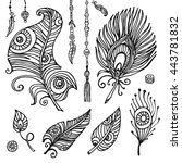 feathers hand drawn vector set...   Shutterstock .eps vector #443781832