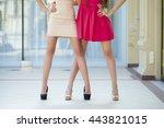 two fashion female dress  body... | Shutterstock . vector #443821015
