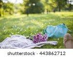 knitted blanket  purple flowers ... | Shutterstock . vector #443862712