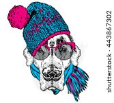 funny dog in hat  scarf and... | Shutterstock .eps vector #443867302
