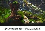 nano aquarium   Shutterstock . vector #443932216
