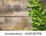 fresh mint leaves on wooden... | Shutterstock . vector #443938798