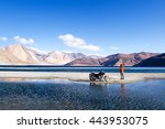 ladakh  india   may 6  2016  a...   Shutterstock . vector #443953075